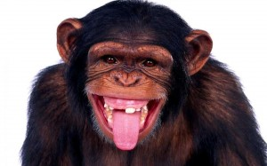 Remember accountabilty by realize whose monkey a task is.