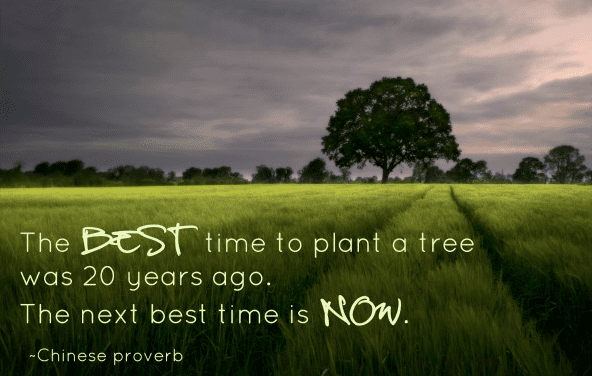 The best time to start a one on one is in the past, the best time to start one on ones is now.
